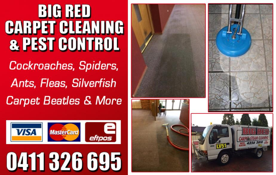 Big Red Carpet Cleaning & Pest Control - 0411 326 695  Carpet Cleaner - Albion Park, Oak Flats, Shellharbour, Barrack Heights, Warilla, Mt Warrigal, Kiama, Bombo, Minnamurra, Kiama Downs, Gerringong, Gerroa, Lake Illawarra  Carpet Cleaning - Albion Park, Oak Flats, Shellharbour, Barrack Heights, Warilla, Mt Warrigal, Kiama, Bombo, Minnamurra, Kiama Downs, Gerringong, Gerroa, Lake Illawarra