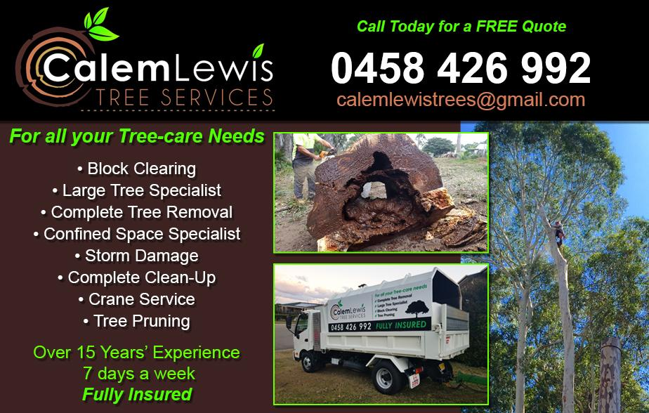 Calem Lewis Tree Services - 0458 426 992  Tree Lopper Batemans Bay, Tomakin, Lilli Pilli, Batehaven, Catalina, Denhams Beach.  Tree Removal Batemans Bay, Tomakin, Lilli Pilli, Batehaven, Catalina, Denhams Beach.